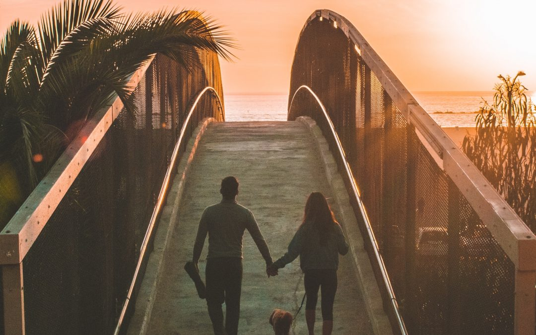 Stop Dysfunctional Dating Patterns and Create the Love You Want Now